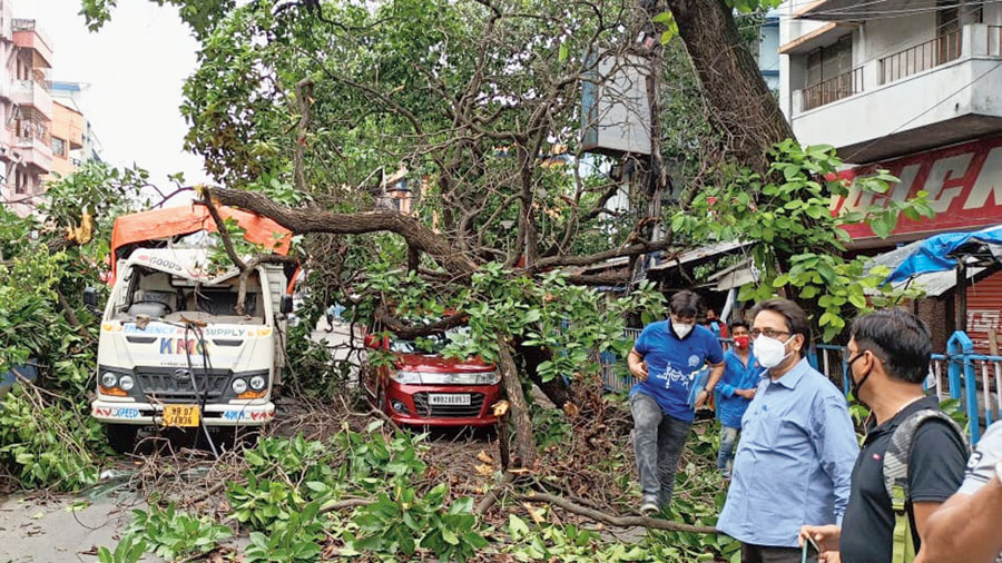 A branch of a kadam tree lies on a goods vehicle and a car near Dhakuria bridge on Monday