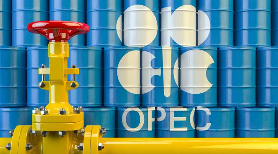 Oil minister Dharmendra Pradhan remarked Opec's decision would undermine consumption-led recovery and hurt consumers.