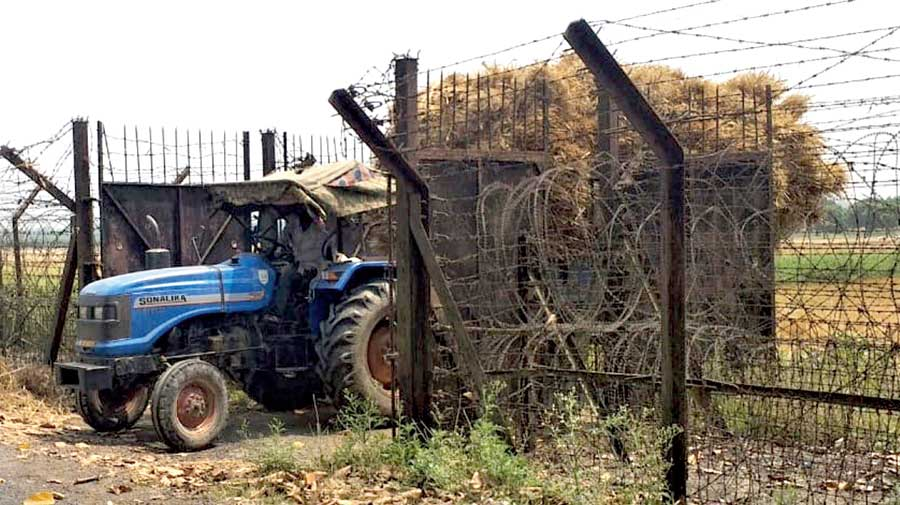 A tractor loaded with paddy crosses the fences on the India-Bangladesh border