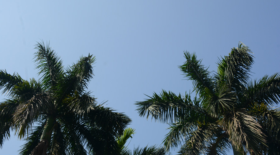 A clear, blue sky over Jamshedpur on Saturday.