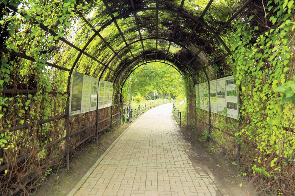 The entry tunnel to the butterfly park