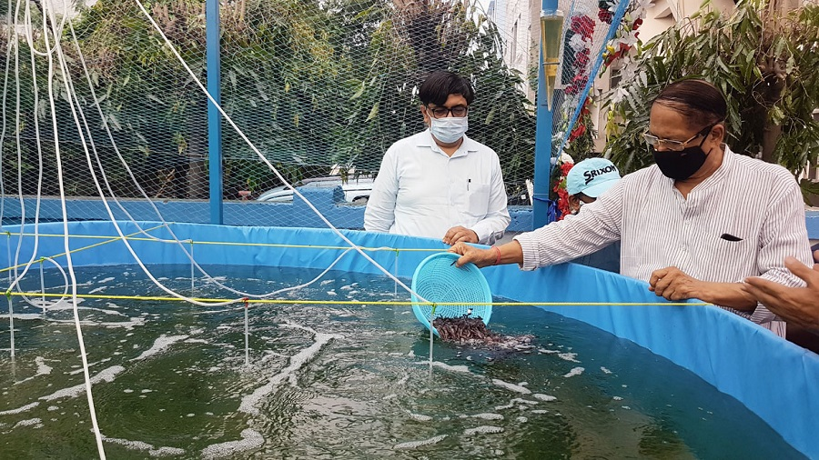 Panchayat and rural development minister Subrata Mukherjee releases fingerlings in the artificial pond in Mrittika Bhavan in DD Block recently.