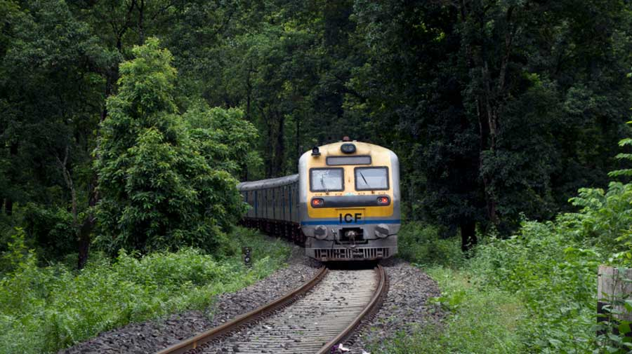 For years now, link coaches of both trains originate and terminate in Haldibari every day. The coaches move via Jalpaiguri Town station and are attached with the main train in Raninagar-Jalpaiguri and New Jalpaiguri stations.