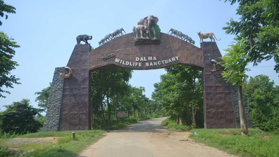 The entrance to Dalma wildlife sanctuary.