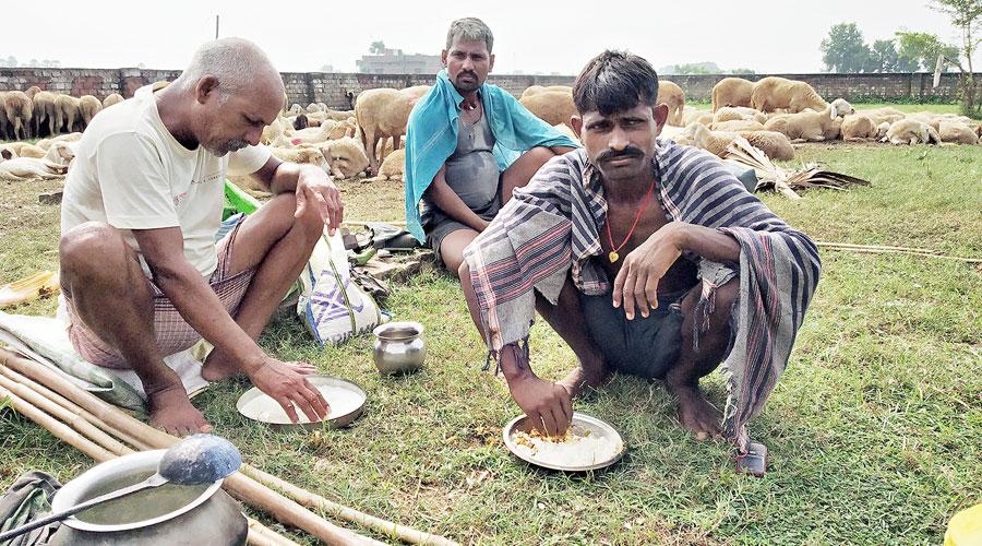 Shepherds have lunch near their flock near Kako in Jehanabad district