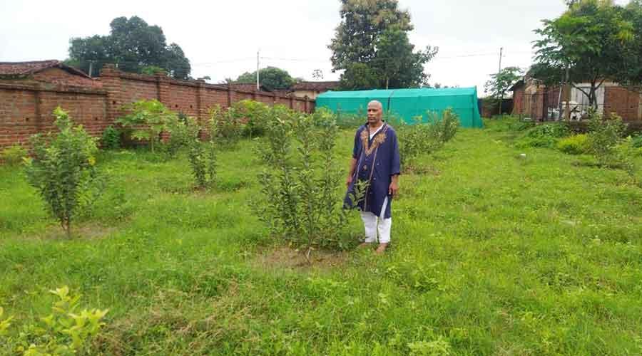 Rameshwar Nath Mehta at his apple farm in Dorio.