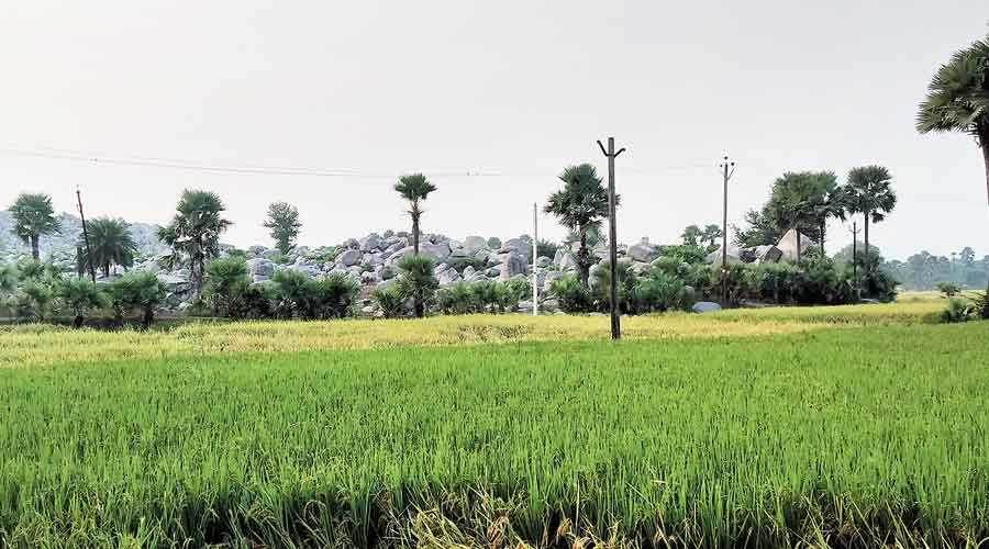 The hills and fields at Patharkatti village in Gaya district of Bihar