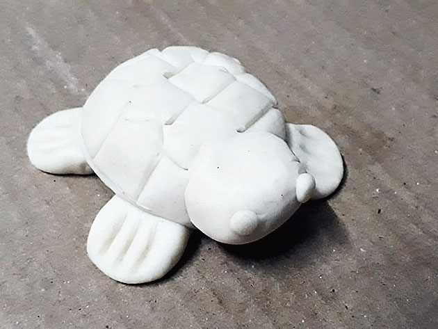 A tortoise of your own making