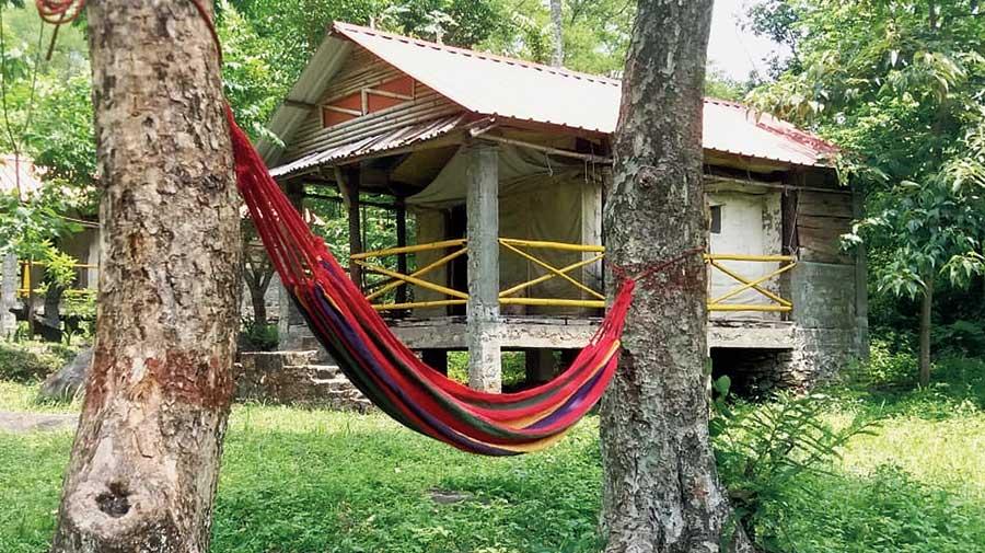 A homestay in the Darjeeling hills.