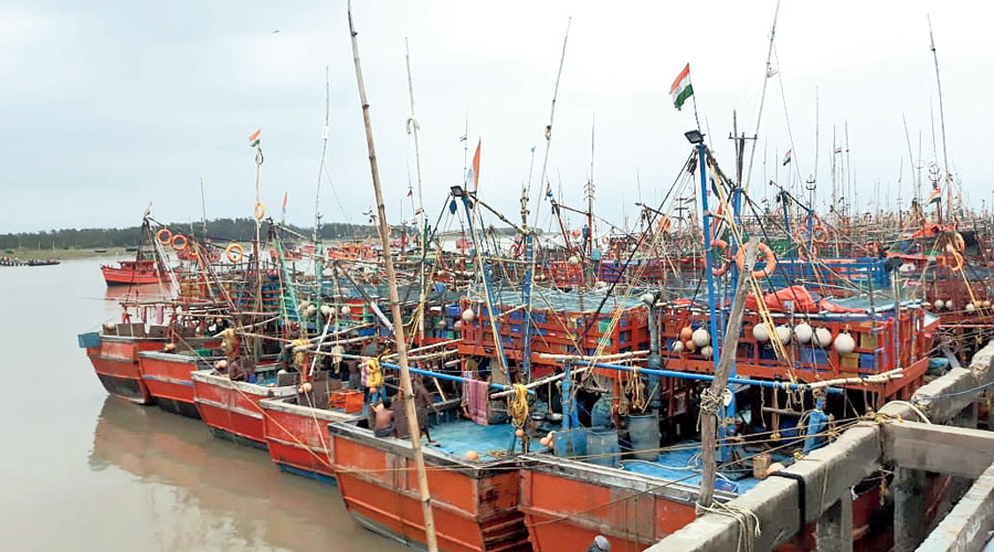 Trawlers moored on the coast in East Midnapore.