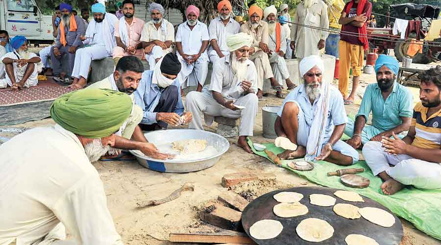 Protesting farmers cook outside the residence of former chief minister Parkash Singh Badal in Punjab