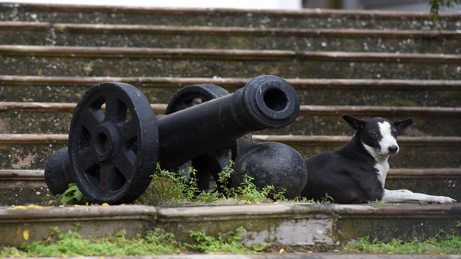 BOOMBURG: An 18mm Krupp cannon at Calcutta's Town Hall is a legacy of the Second Boer War