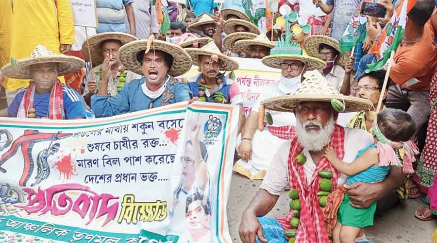 Trinamul workers protest against the new farm laws at Bongaon in North 24-Parganas on Friday