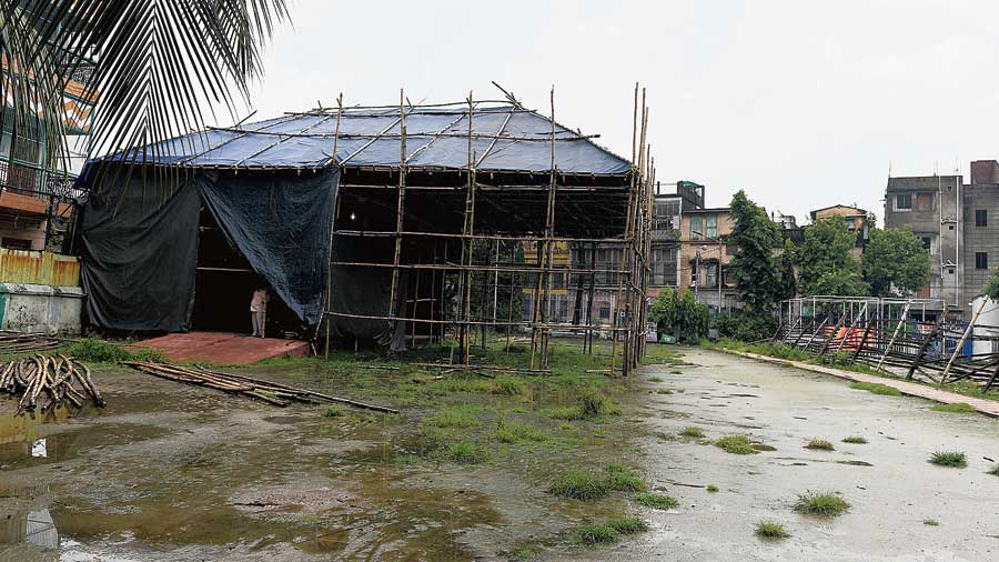 The Simla Byayam Samity Puja pandal being built on Friday.