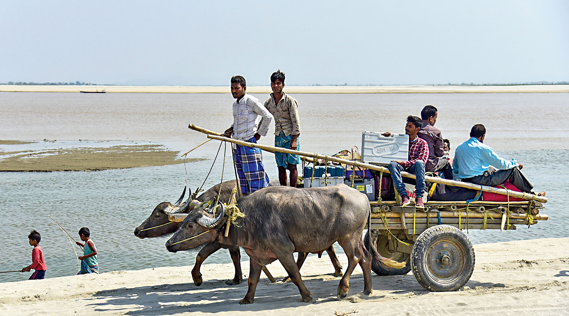 Polling parties travel on a buffalo cart for election duty in Kamrup (Rural) district in Assam on Monday.