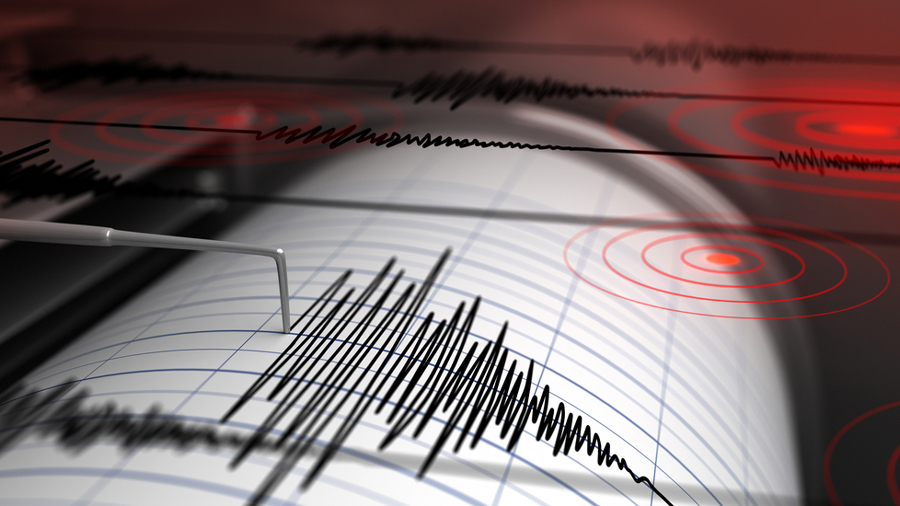 The earthquake took place at 8.39 am and the epicentre was at Nagaon in central Assam, the National Center for Seismology said.