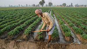 Economists said good rainfall would help curb food inflation, boost rural income, and push overall demand for agricultural products and consumer durables