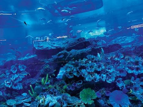 The indoor aquarium at The Dubai Mall.