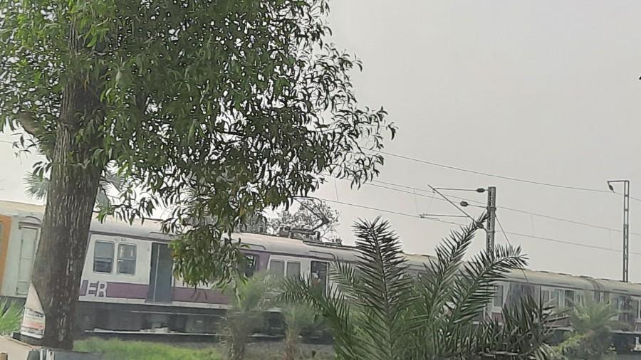 The train chugs along the paddy fields