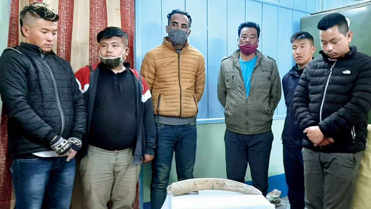 Some of those arrested with the tusk in Jalpaiguri