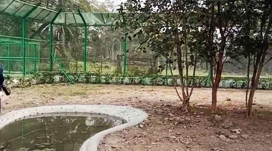 The upcoming enclosure for fishing cats at Garchumuk Deer Park in Uluberia, Howrah