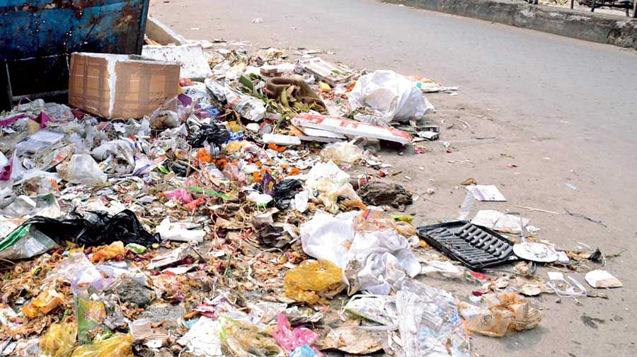 Heaps of garbage on Station Feeder Road in Siliguri on Friday.