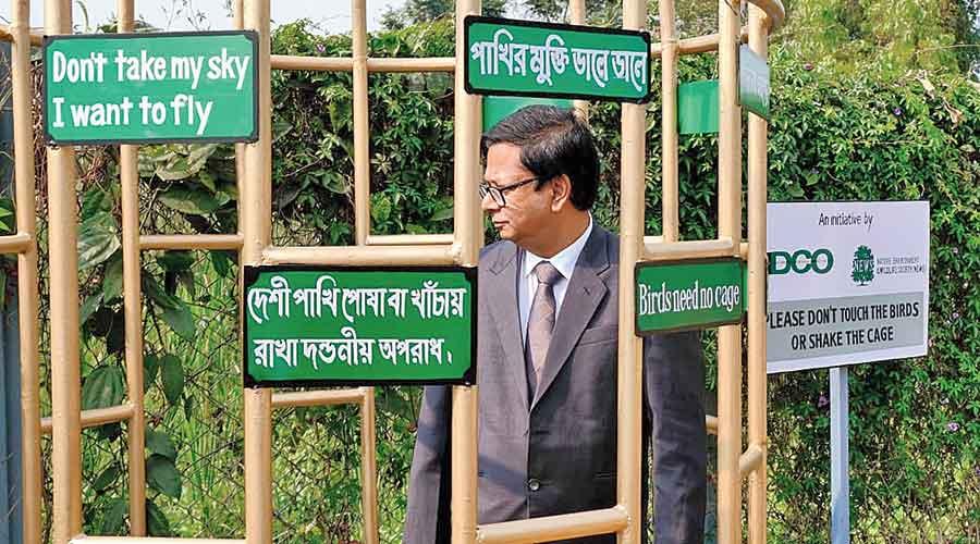 Sen steps inside the cage