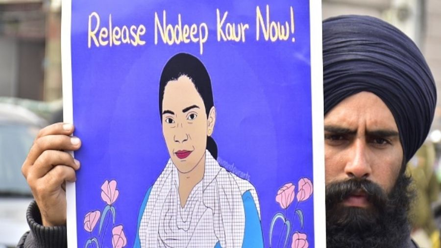 Nodeep Kaur has also claimed that her medical examination was not conducted in violation of section 54 of the Criminal Procedure Code.