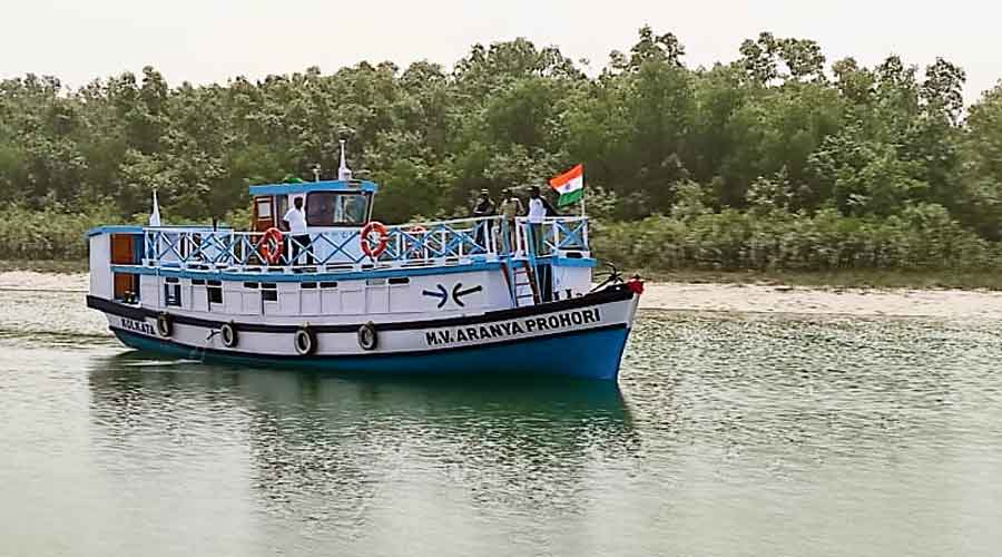 The patrol vessel deployed by the forest department  on Tuesday