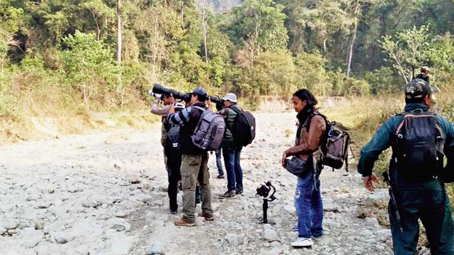 Bird-watchers on the trail at Mahananda sanctuary