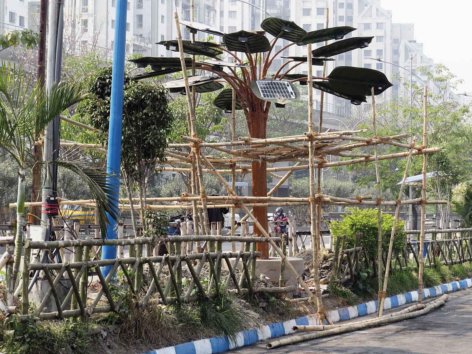 A solar tree