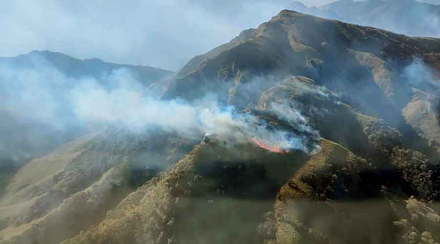 The fire on the Kohima side of the Dzukou Valley on Monday