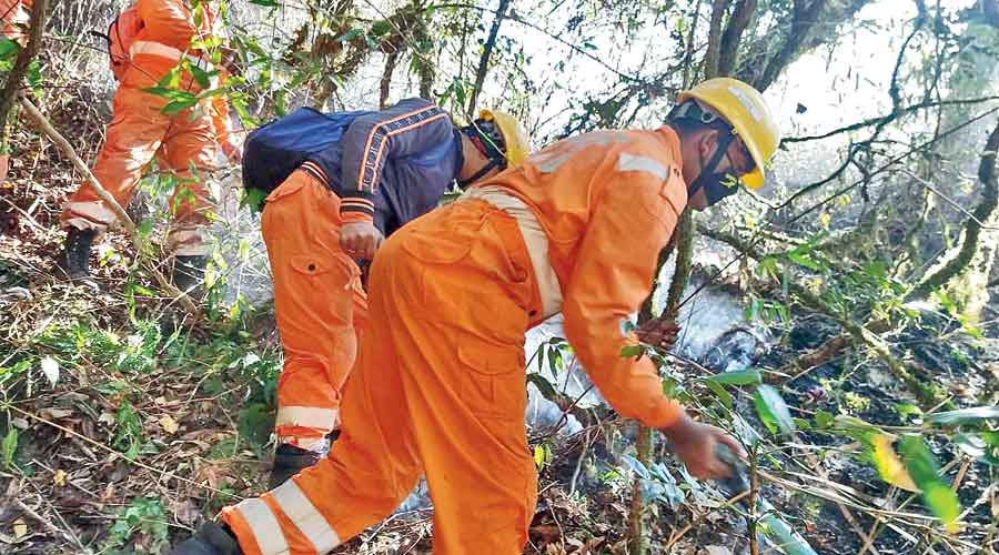 NDRF personnel at work in the Dzukou Valley