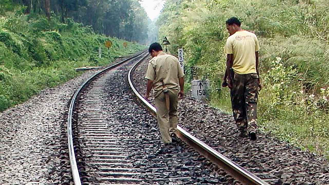A stretch of the tracks between Gulma and Sevoke stations, on the outskirts of Siliguri.