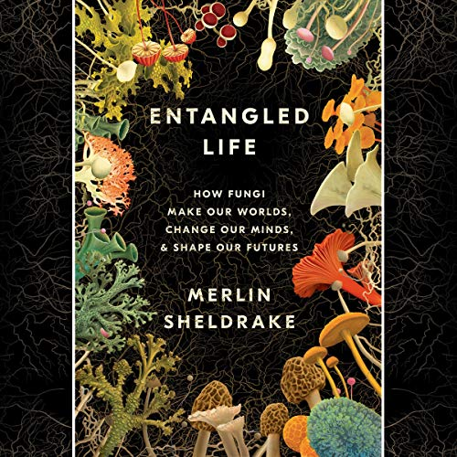 Entangled Life: How Fungi Make Our Worlds, Change Our Minds & Shape Our Futures by Merlin Sheldrake,Penguin, $28