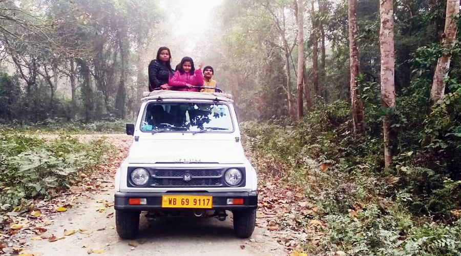 A vehicle carries tourists on the safari at the Chilapata forest in Alipurduar on Tuesday.