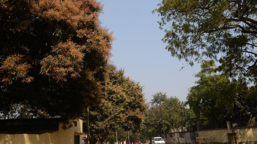 Clear sky over Bistupur in Jamshedpur on Friday.
