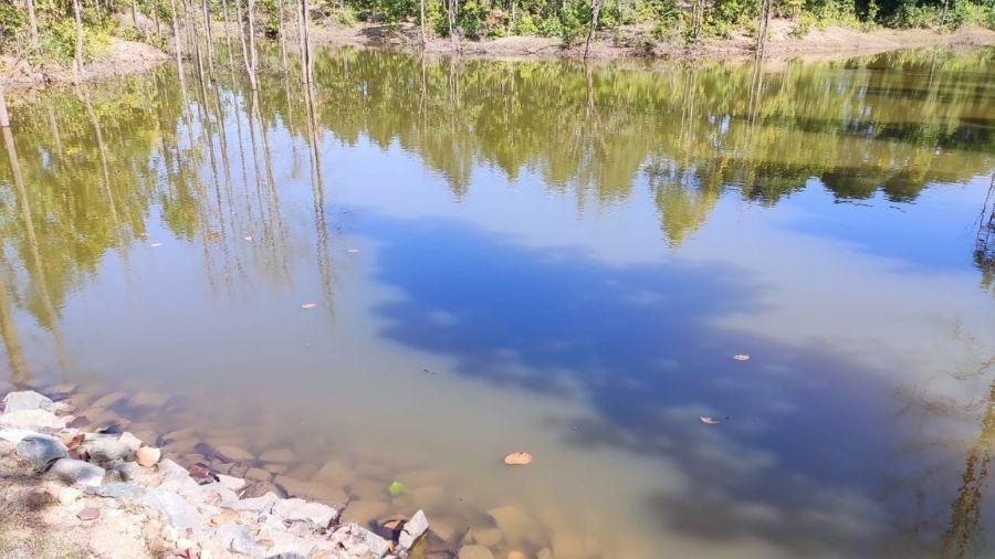A watering hole inside Dalma wildlife sanctuary.