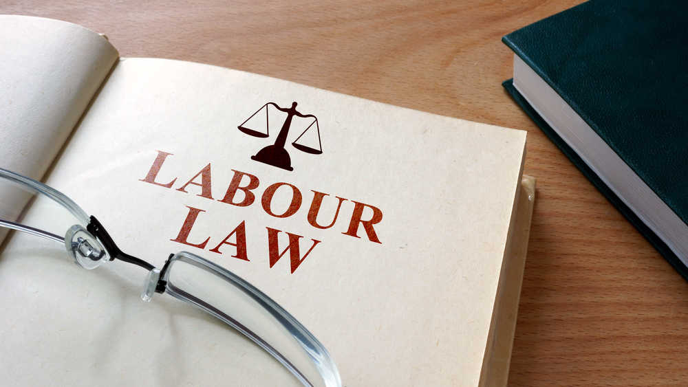 The four new labour codes— Code on Social Security, 2020, Occupational Safety, Health and Working Conditions Code, 2020, Industrial Relations Code, 2020, and Code on Wages, 2019 — subsume  the existing 29 central labour and industrial laws and aim to avoid multiplicity of laws.