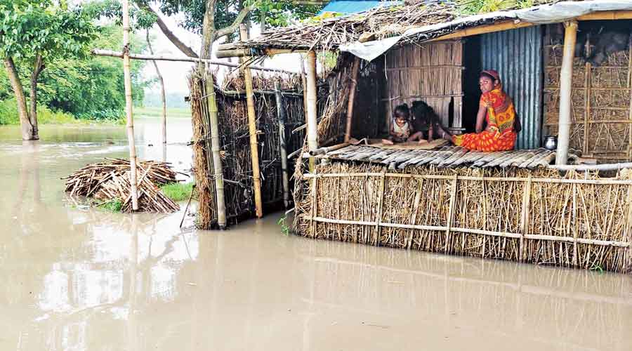 A submerged village in Narpatganj block of Araria district on Tuesday