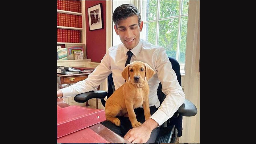 Nova, the dog, with Rishi Sunak.