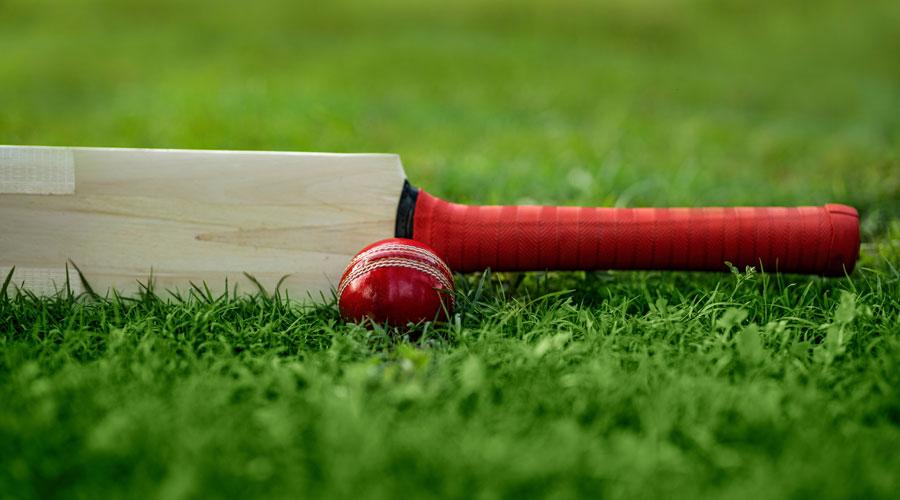 Cricket - 2.5 Miliar Penggemar