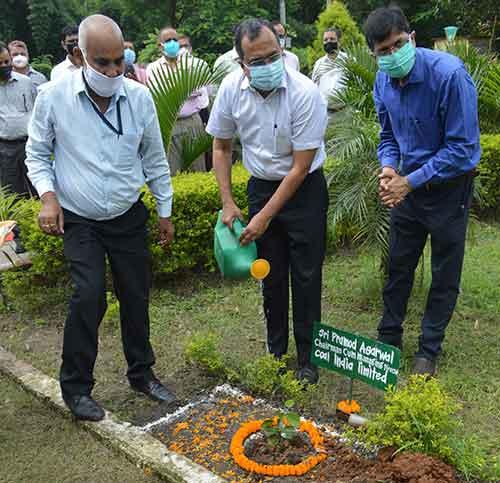 Coal India Chairman Pramod Agarwal (in white half shirt) plants a sapling at Eco Hut in Koylanagar on Thursday.