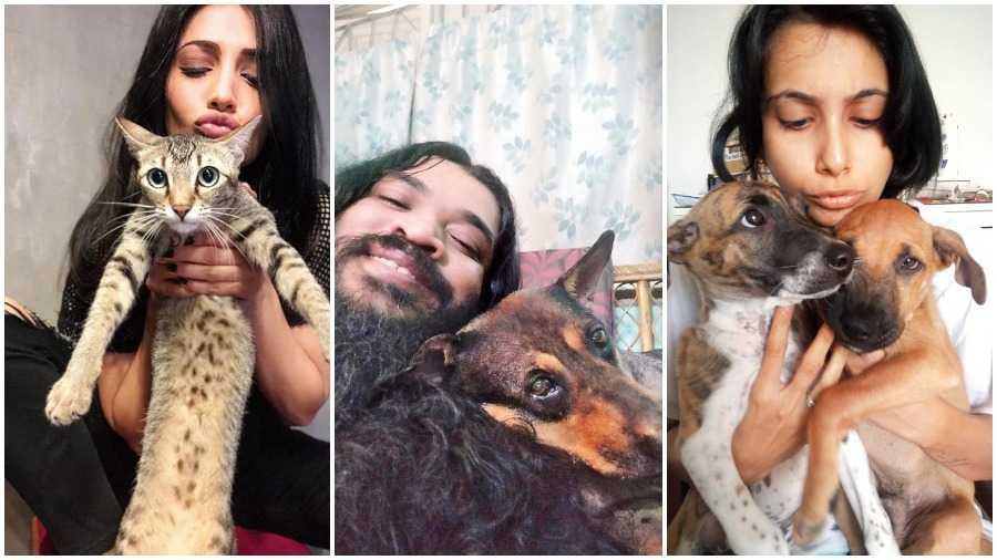 Shruti Haasan with Clara, Gaurab Chatterjee with his doggo & Kahini Panjabi with her indies