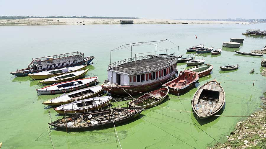 Boats moored in the Ganga in Varanasi.