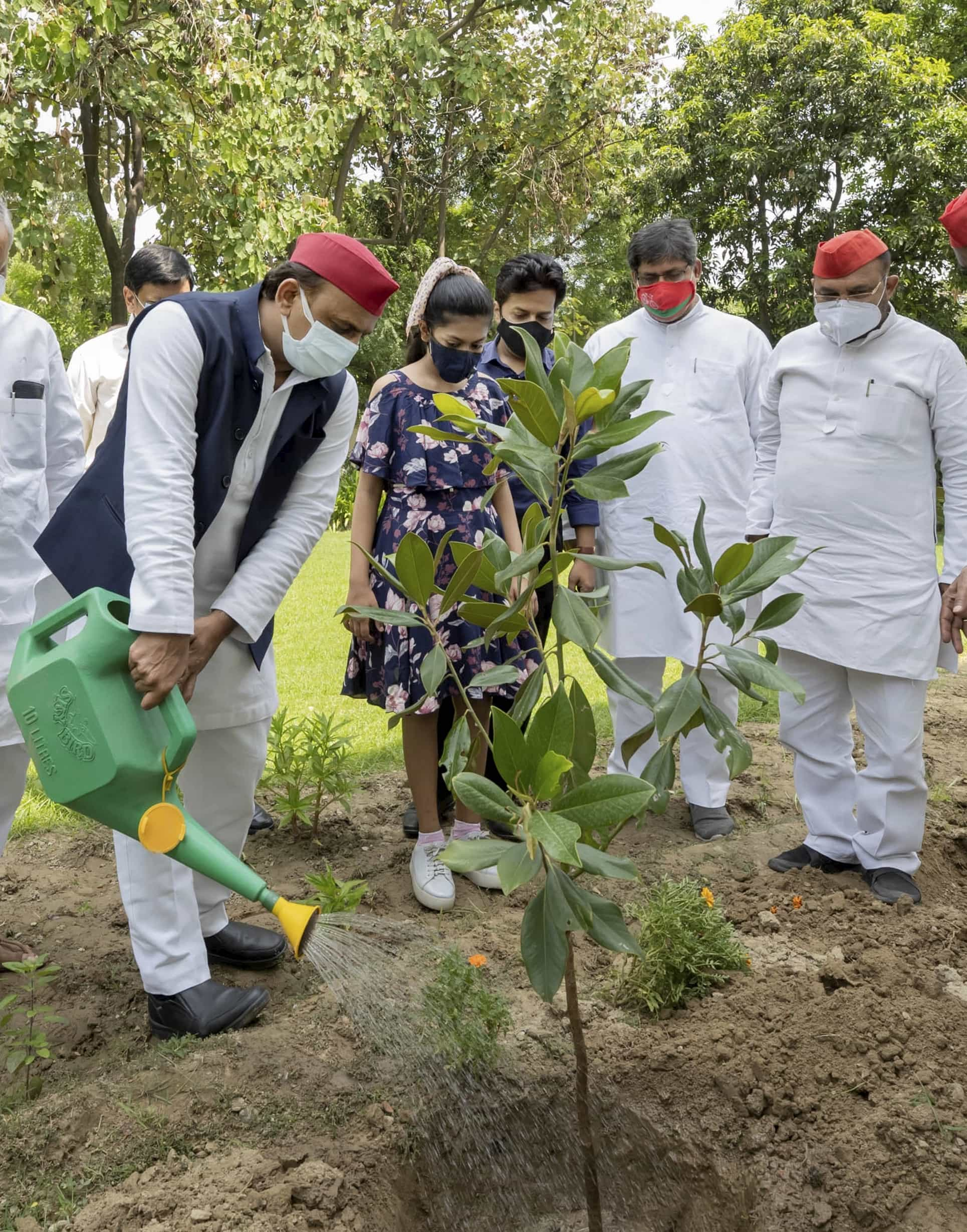 Samajwadi Party leader Akhilesh Yadav during a plantation drive at party headquarters in Lucknow on World Environment Day.