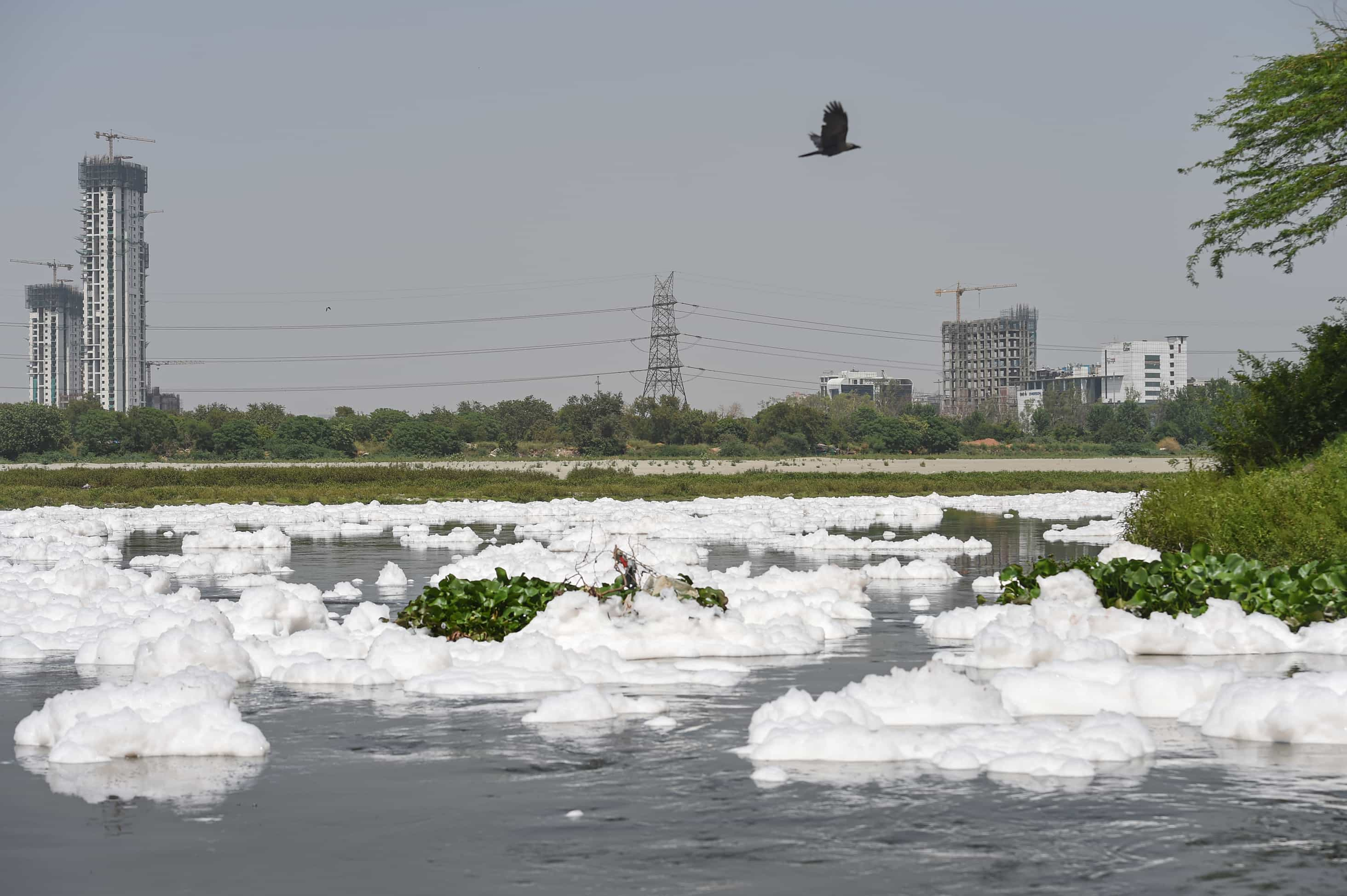 Toxic foam float on the surface of the polluted Yamuna river in New Delhi on Saturday.