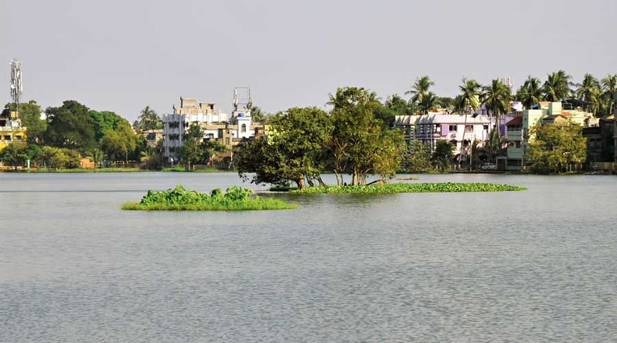 Santragachhi jheel.