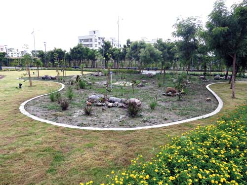 A patch of low lying land has been named Rain Garden