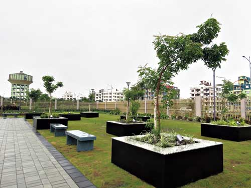 Neem trees planted in the park in recent months